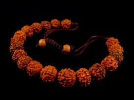 BrMala25 Bracelet Mala Rudraksha